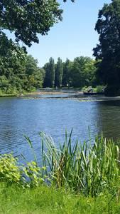 Wörlitzer Park