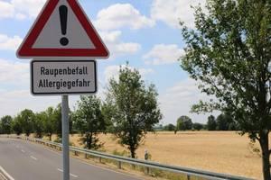 Verkehrsschild allgemeine Gefahrenquelle VZ 101 mit Zusatzzeichen an der Kreisstraße 2020 zwischen Pratau und Dabrun - Foto Gauert.jpg